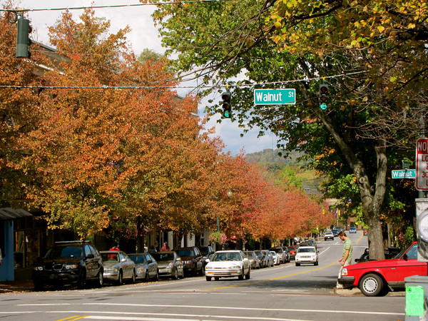 Asheville Downtown3
